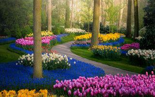 Imagini de vis din cea mai frumoasă grădină din lume. Este închisă pentru prima dată după 71 de ani