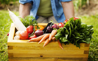 Ce legume cresc cel mai repede? 10 soiuri pe care să le ai în grădină