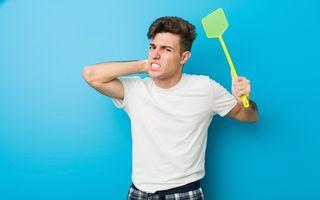 7 trucuri împotriva țânțarilor. Ține-i departe de tine și de casa ta!