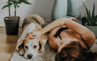 Urmează să lucrezi de acasă pe termen nedeterminat? 5 activități care te vor ajuta să rămâi calmă și concentrată
