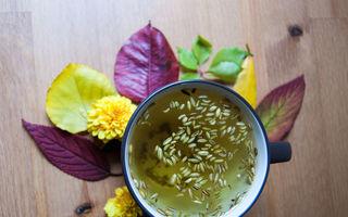 Ceai de fenicul: Cele mai importante beneficii pentru sănătate
