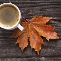 Horoscopul saptamanii 26 octombrie-1 noiembrie. Taurul ajunge la o rascruce de drumuri pe plan sentimental