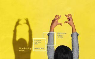 Ce semnificație au cele două culori ale anului 2021 desemnate de Pantone