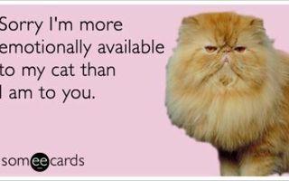 Cele mai bune meme pentru zodia Vărsător. Vei râde copios!