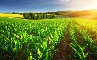 Lidl dezvoltă primul standard pentru conservarea biodiversității în agricultura convențională, printr-un nou modul al certificării GLOBALG.A.P.