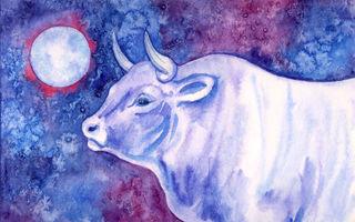 Horoscop chinezesc 2021. Cele mai ghinioniste zodii la bani în anul Bivolului de Metal