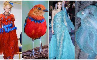 35 de creații vestimentare ce par inspirate din natură