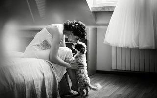 Sufletul petrecerii: 19 câini care au făcut spectacol la nuntă