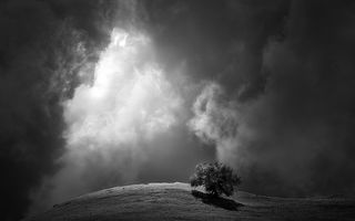 Mai puțin înseamnă mai mult: Cele mai frumoase imagini alb-negru