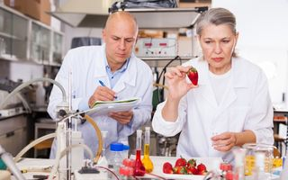 Intoxicație cu nitrați: cauze, simptome și tratament
