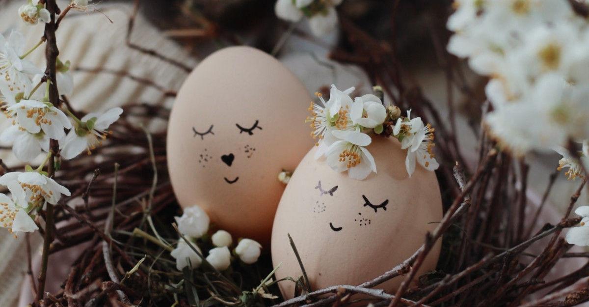 oua vopsite