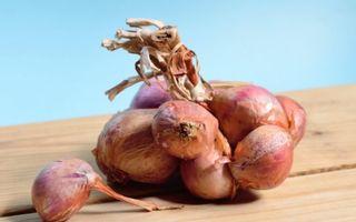 De ce să introduci ceapa roșie în alimentație: 10 beneficii miraculoase