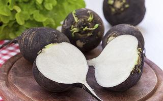 De ce este bine să mănânci ridiche neagră: ce beneficii are pentru sănătate