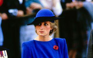 Prințesa Diana a fost asasinată? Ce a dezvăluit Michael Mansfield, avocatul familiei regale