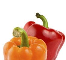 Ardeiul roșu - beneficii, proprietăți terapeutice, dezavantaje