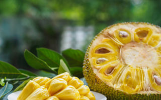 Cum se consumă jackfruit sau carnea vegetală și ce beneficii are acest fruct?