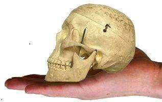 Accidentul vascular cerebral - simptome, diagnostic, tratament