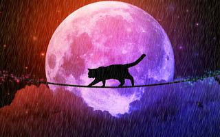 În ce superstiții cred zodiile. Balanța le întrece pe toate!