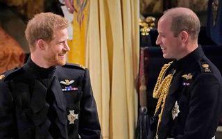 Fratii William și Harry vor apărea într-un documentar despre Prințul Philip