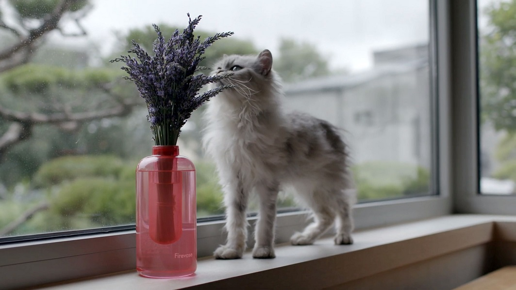 Vaza anti-incendiu îți apără casa de flăcări